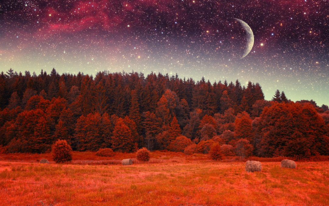 St 14. 10. od 18:30 Zpívání manter – Podzimní kirtan