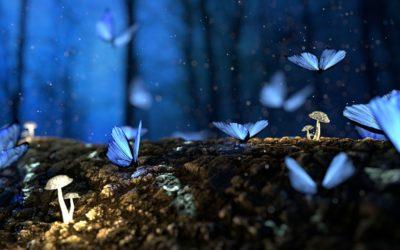 """St 21.10. Meditace a ladění slovem, vůní a zvukem """"Vize a sny"""""""